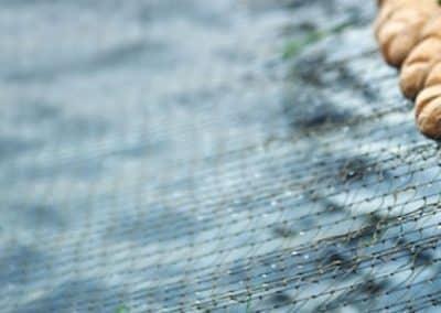 Риболовна корда